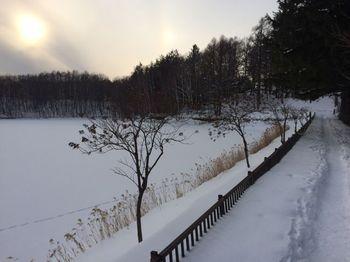 冬の水源池.jpg