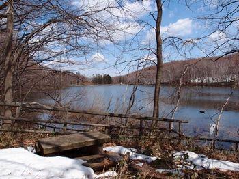 春の水源池.jpg