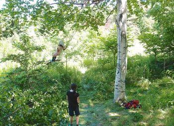 森のブランコ.jpg