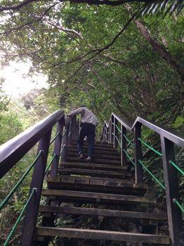 階段を登って.jpg