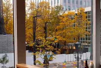 道庁前の銀杏並木.jpg